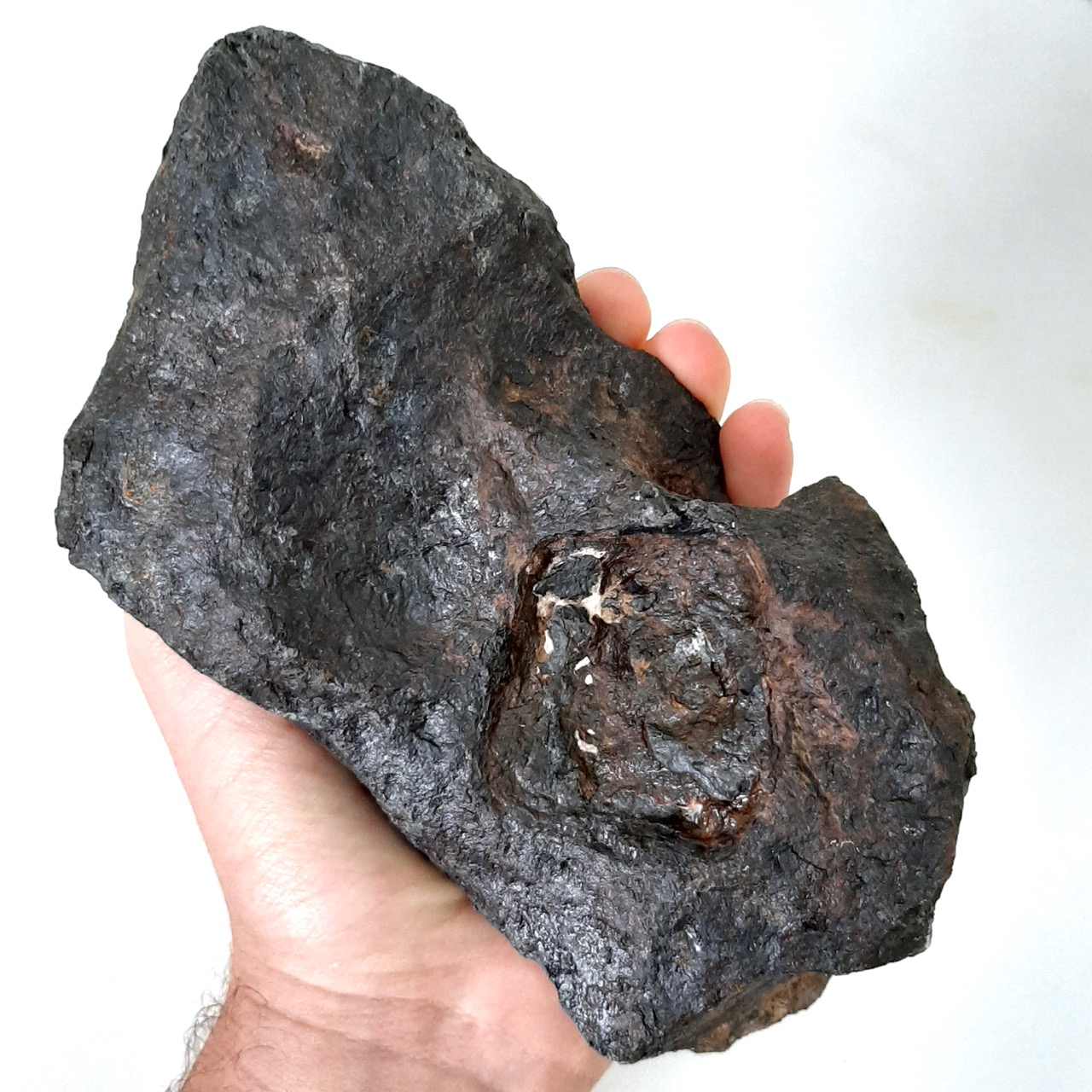 Canyon Diablo meteorite. Big iron with graphite inclusion.