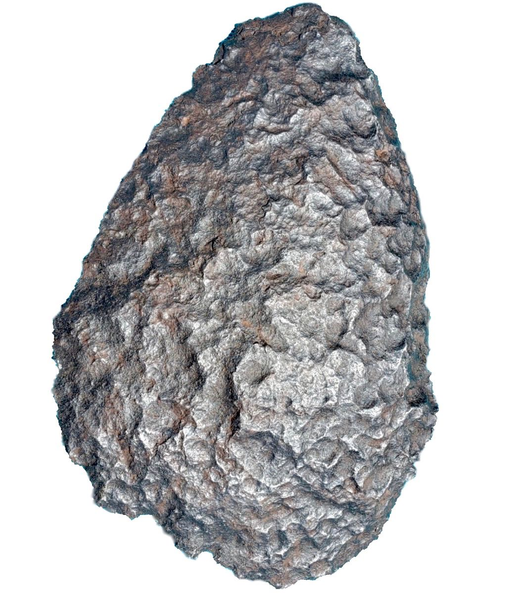 Gibeon meteorite. Big endcut (stock in the US).