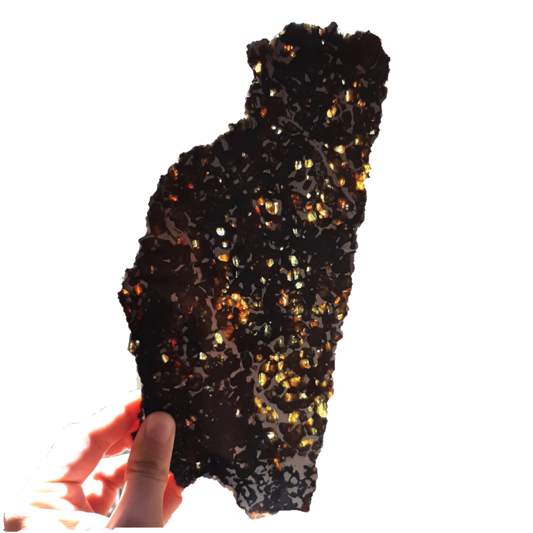 Seymchan pallasite meteorite.