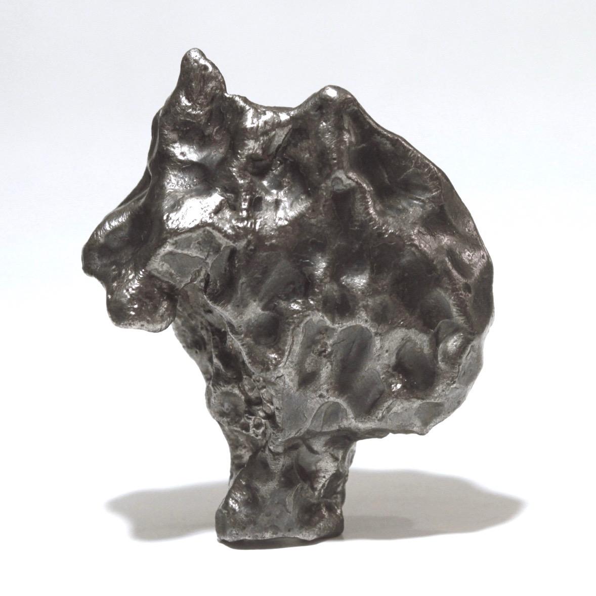 Sikhote Alin meteorite. Sculptural shape.