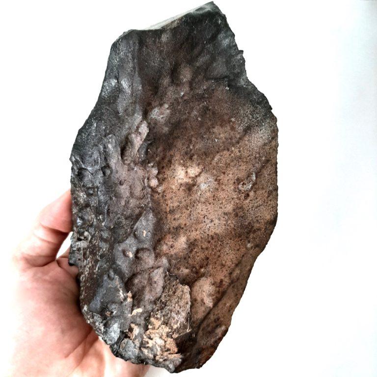 NWA 1495 meteorite. L4-5 chondrite. Endcut.