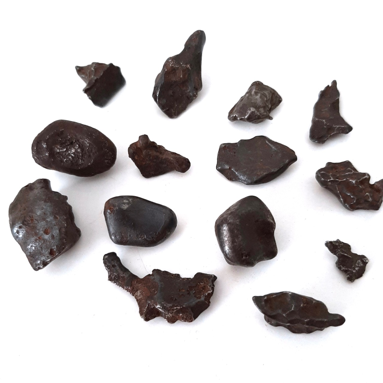 Sikhote Alin meteorite. 14 pieces.