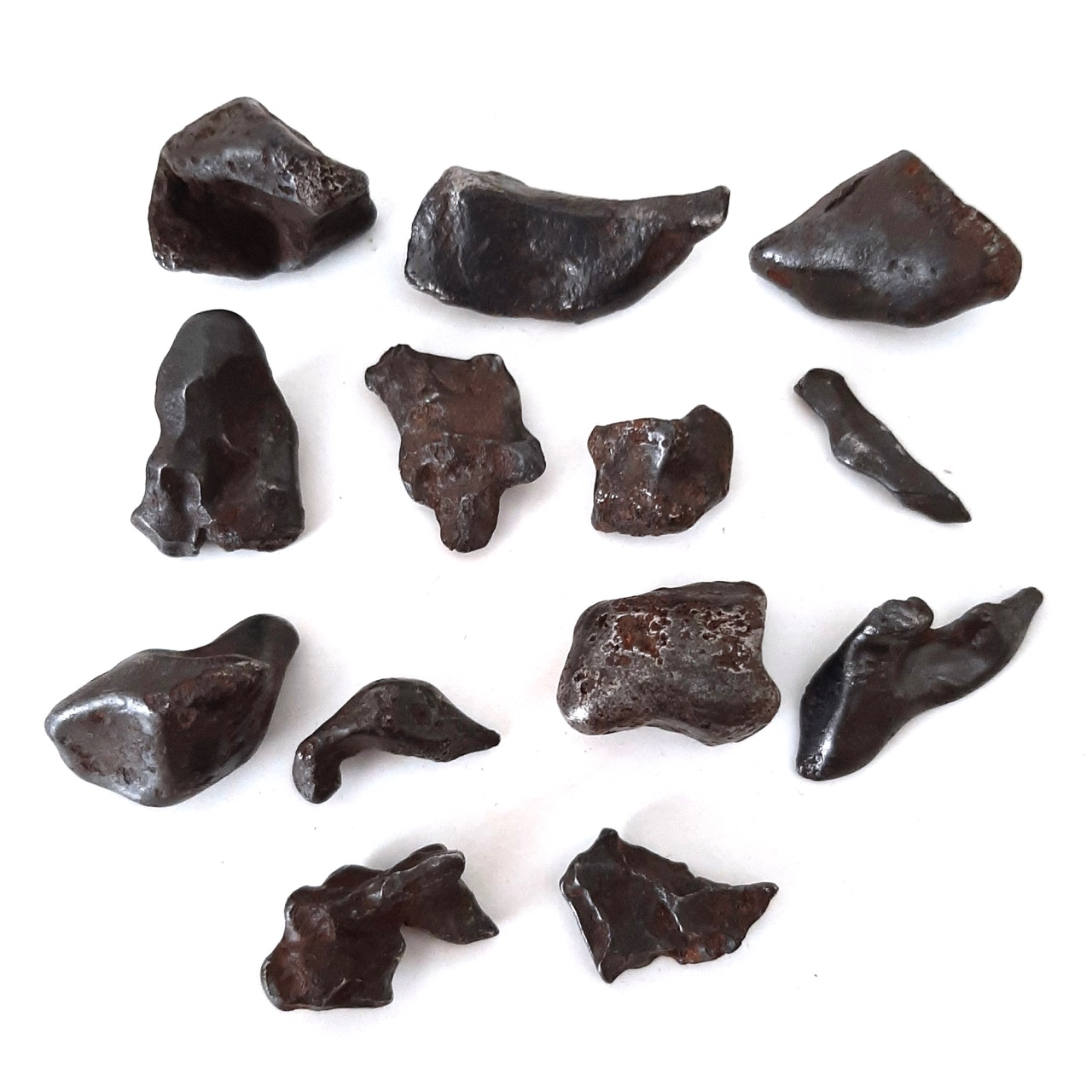 Sikhote Alin meteorite. 13 pieces.