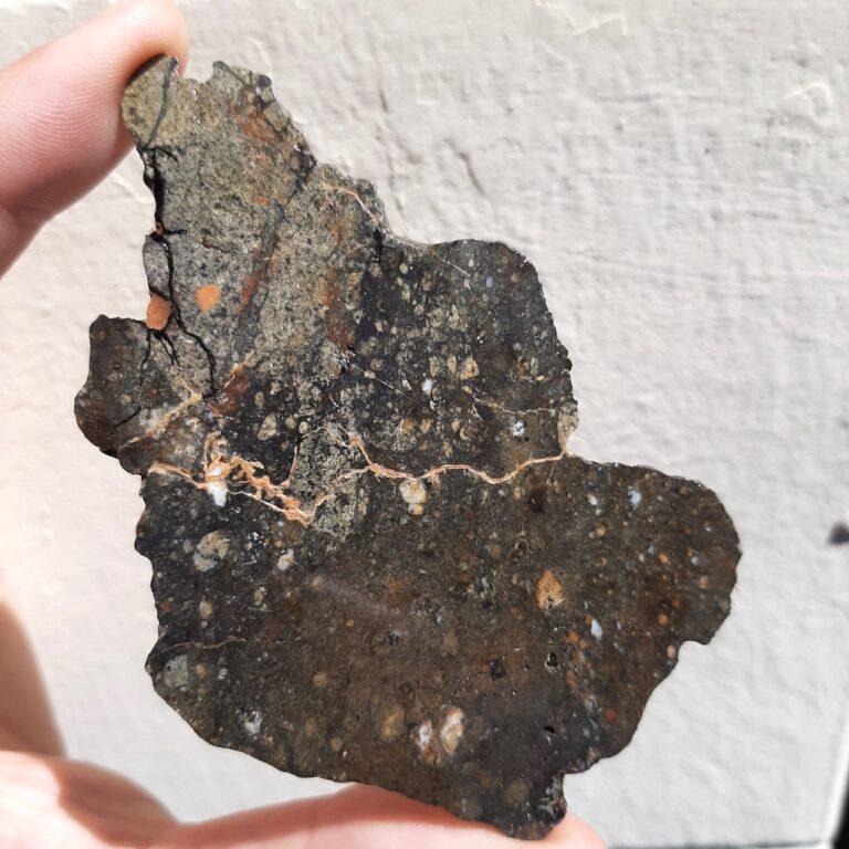 NWA 8583 meteorite. Eucrite with amazing texture.