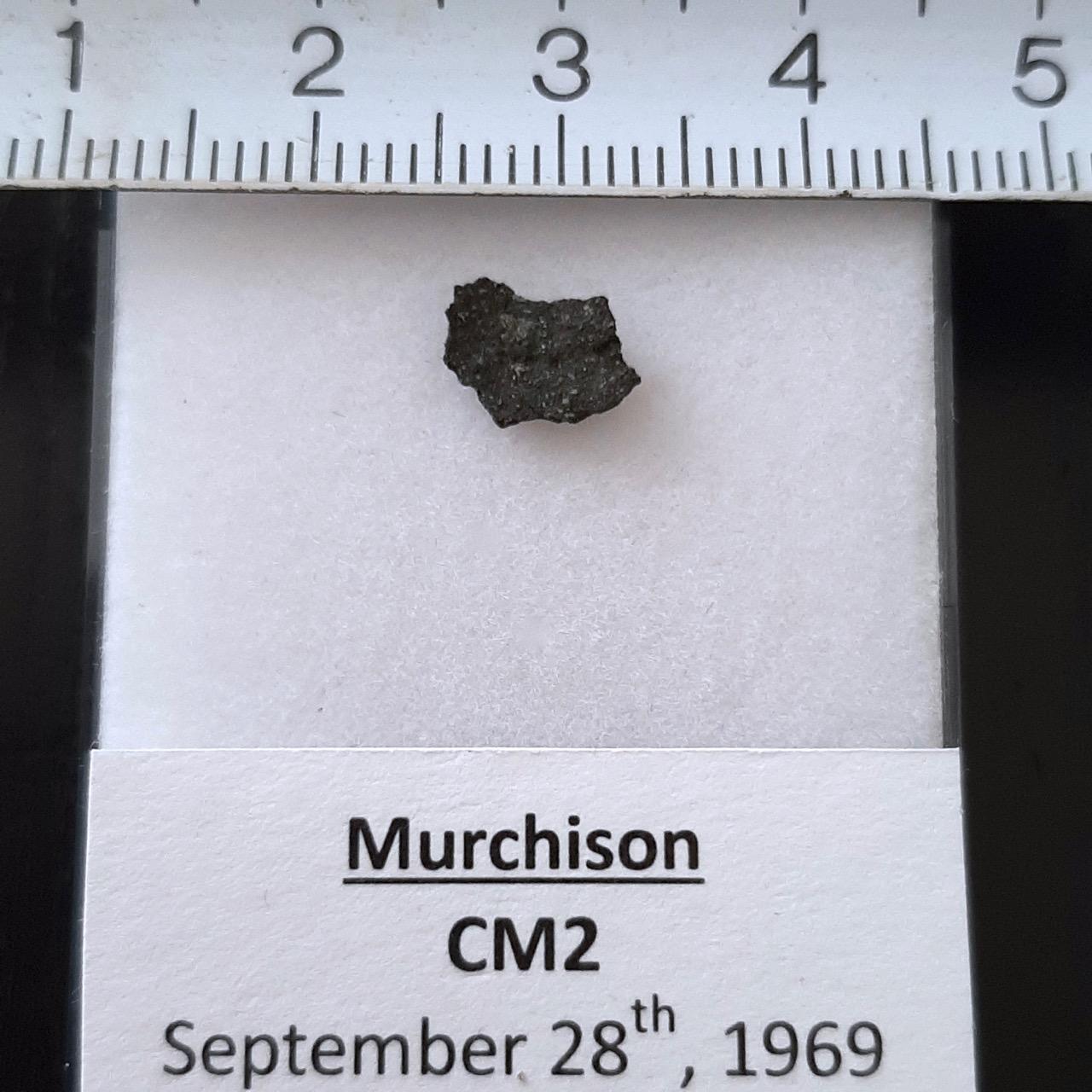 Murchison meteorite. CM2 with pre-solar grains.