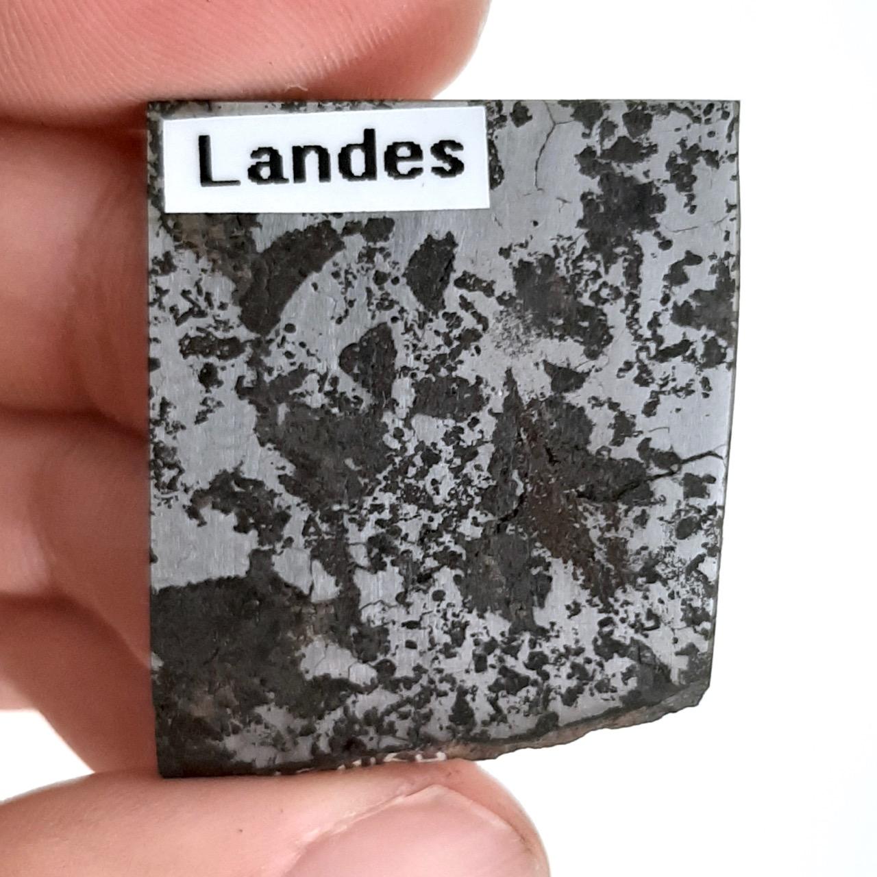 Landes meteorite. Silicated iron. Code: H91.129.