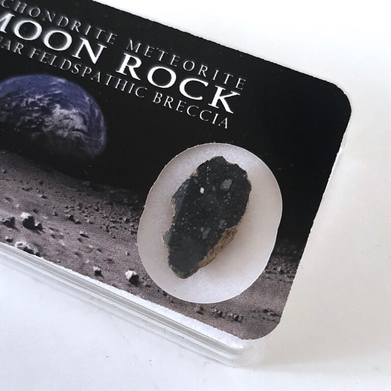 Lunar meteorite. NWA 11474 paired. Endcut in collection box.