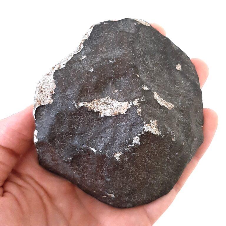 Ghadamis meteorite. Hammadah al Hamra 346.